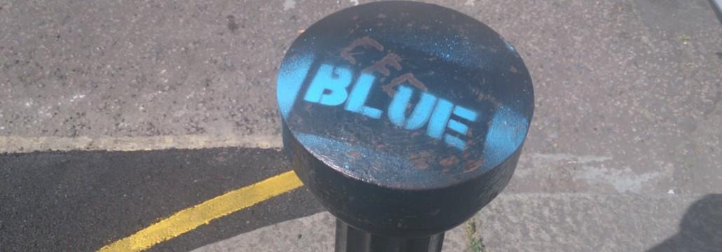 MaygroveBlue