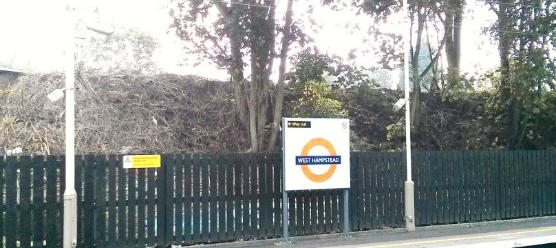 Trees on Network Rail land liable to be removed at a later date