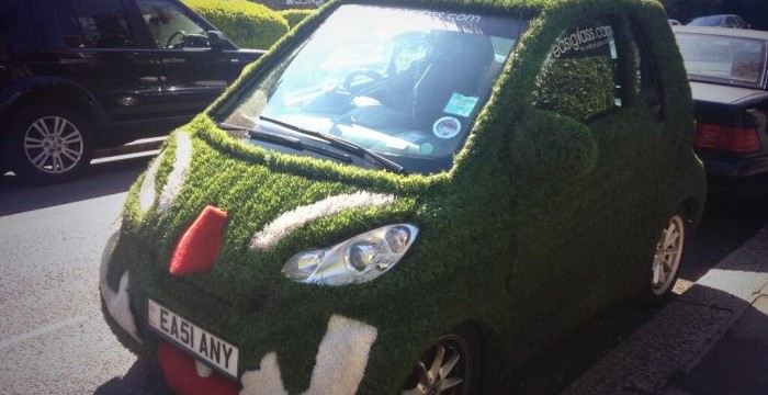 I know we've had a rainy winter & it's now sunny but not sure that explains a sprouting car? Spotted in #whamp via @EllenCPringle