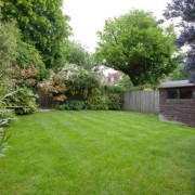 Fawley Road_garden