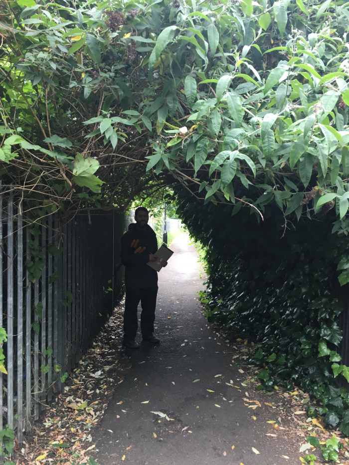 Tunnel of shrubs - time to do something about it?  And throw some light on the Black Path