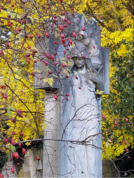 Autumn in the cemetery. Image @julierrix1