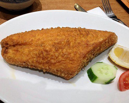 nautilus-salmon