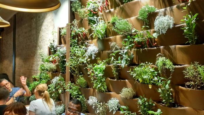 Quartieri herb garden